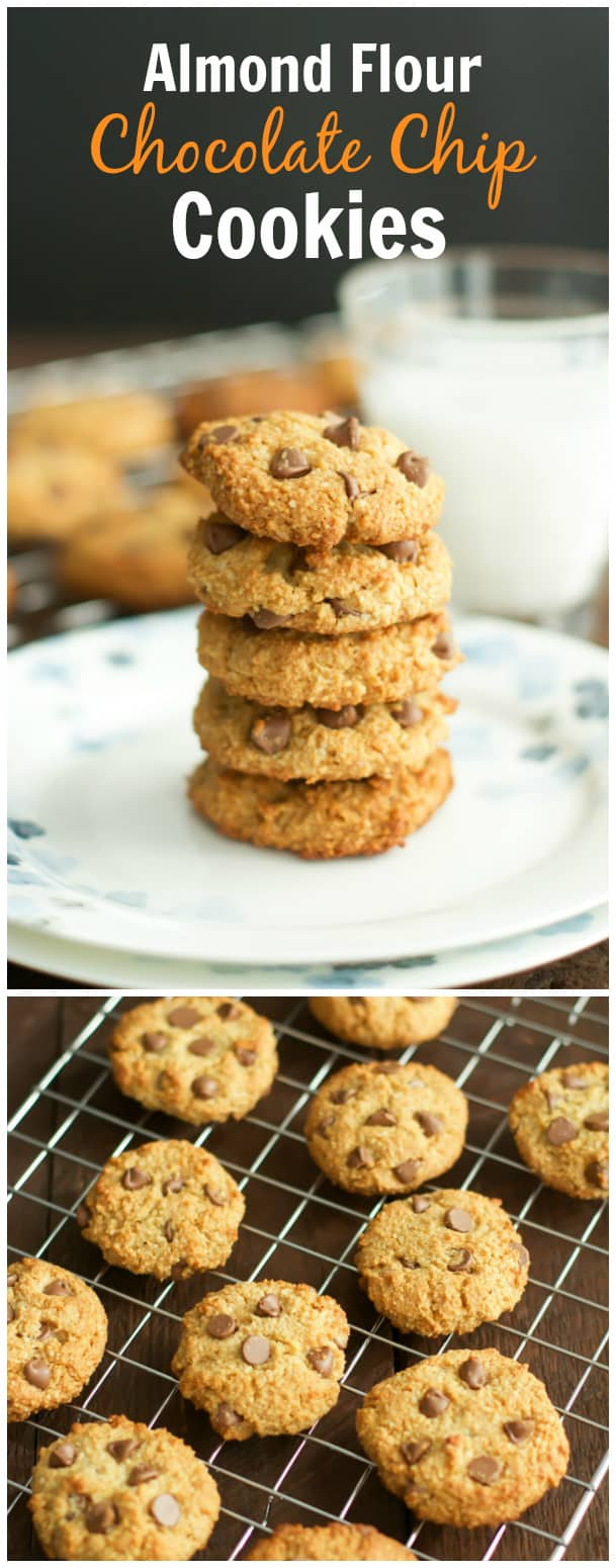 ... cookies without any flour in them gluten free chocolate chip cookies