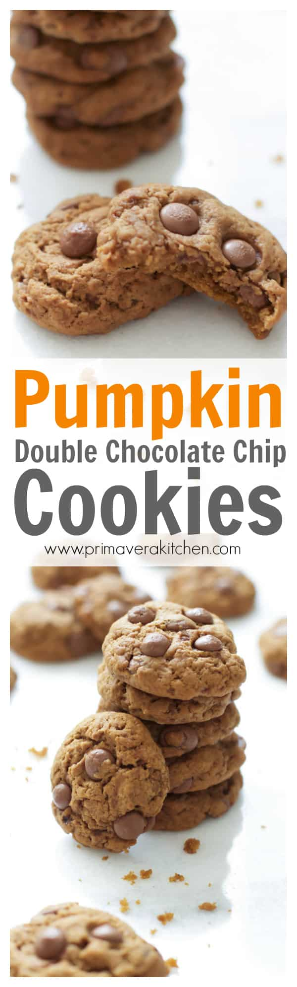 Pumpkin Double Chocolate Chip Cookies - An easy Pumpkin Double Chocolate Chip Cookies recipe that quick to make, soft, chewy and loaded with cocoa powder, chocolate chips, pumpkin puree and warm spices!! It's a must make cookie recipe for fall!