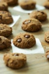 Gluten-free Coconut Flour Chocolate Chip Cookies