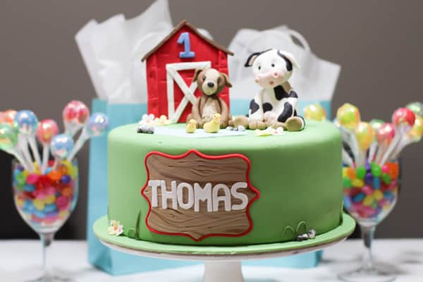 Life Beyond Cooking- Thomas' 1st Birthday-4