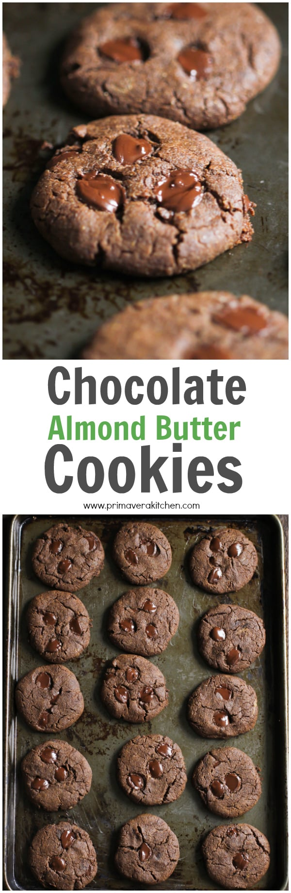Chocolate Almond Butter Cookies - These gluten-free and Paleo Chocolate Almond Butter Cookies are made with few simple ingredients and it's ready in 15 minutes. | www.primaverakitchen.com